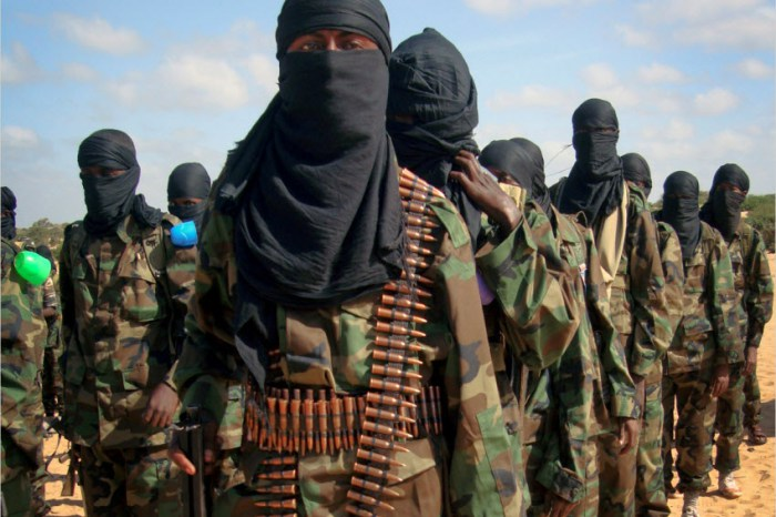 Government Forces Kill the Son of Al-shabab's Leader and Other Senior Officials