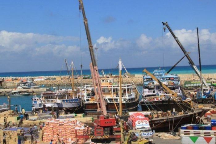 DP World to Lose Berbera and Bosasso Deals After Banned From Somalia