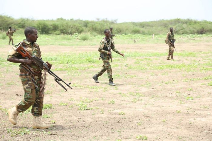 Jubbaland forces kill 10 Al-Shabab fighters in Southern Somalia