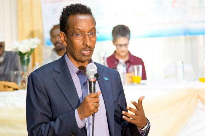 Somalia defends its position on Saudi-Canada rift, saying it was a call to respect sovereignty
