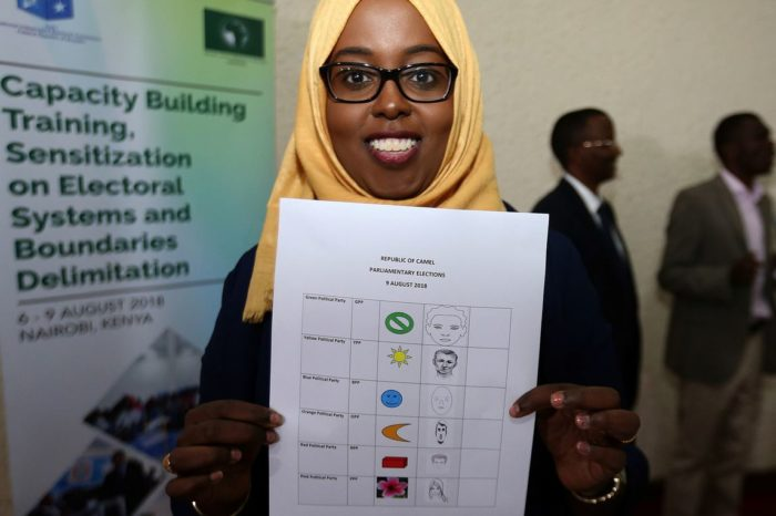 Somalia's electoral stakeholders agree to work towards an efficient electoral system