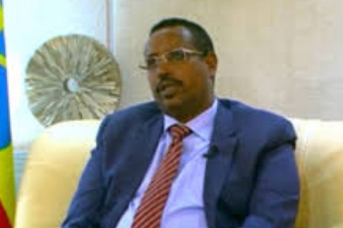 HRW and ONLF welcome arrest of Ex-leader of Ethiopia's Somali state