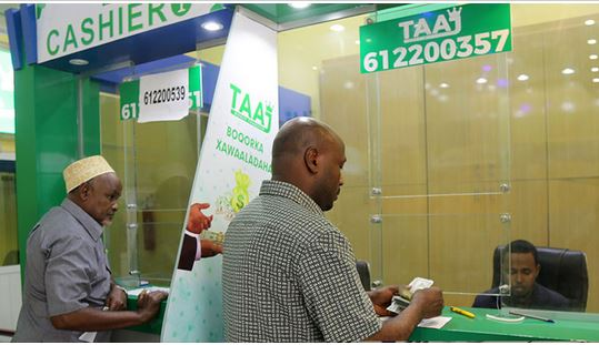 Mobile money supersedes use of cash in Somalia