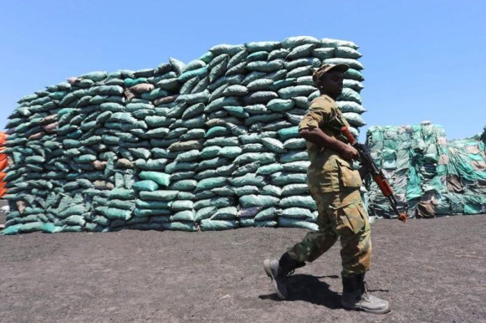 Iran is new transit point for Somali charcoal in illicit trade taxed by Al-Shabaab
