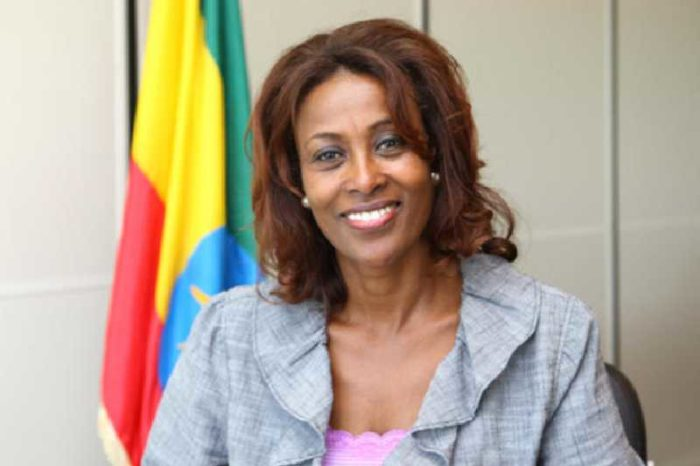 Ethiopia swears in first female Supreme Court chief